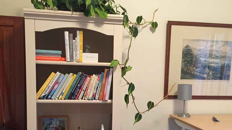 Bookcase with plant in Maggie's office